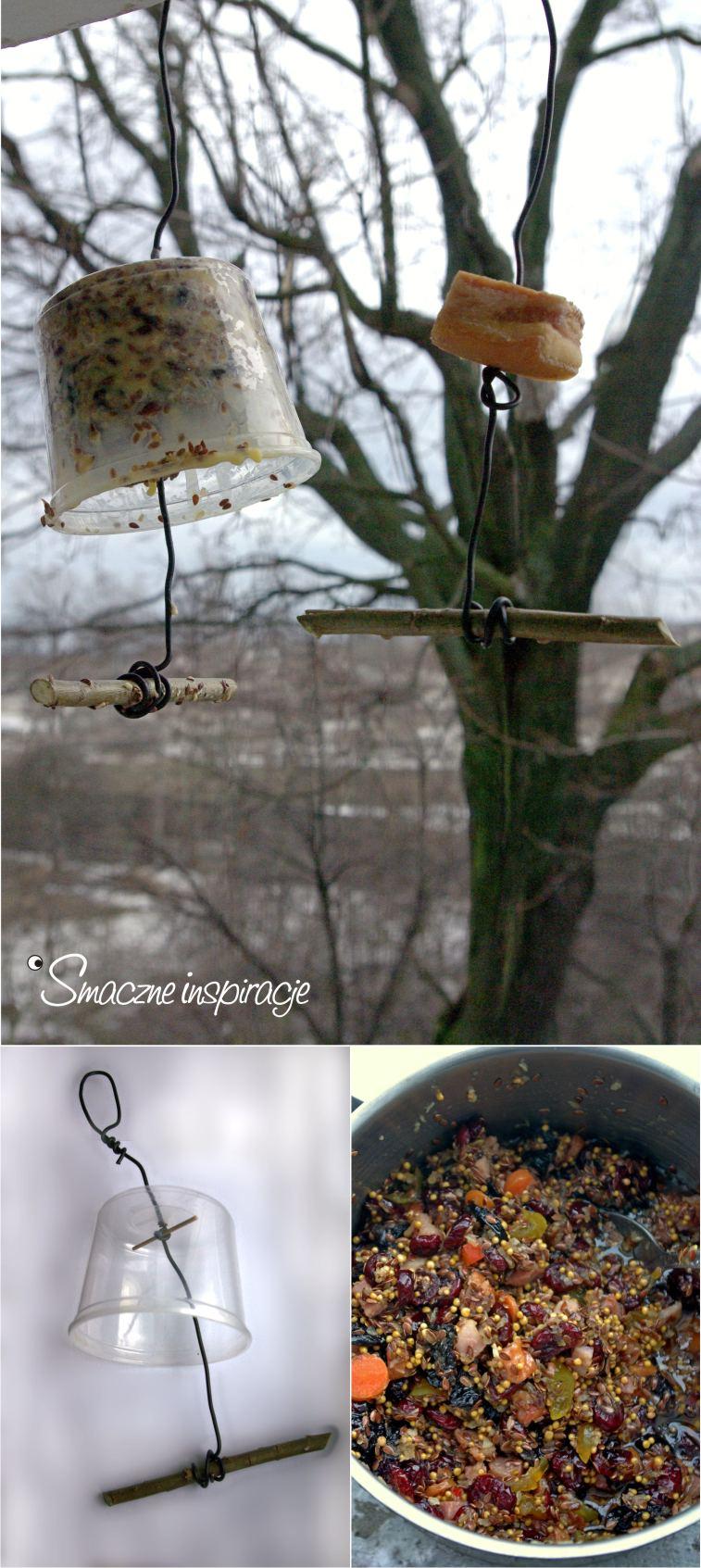 3_ Dokarmianie ptaków