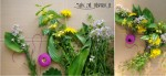 Jak zrobić wianek z kwiatów polnych